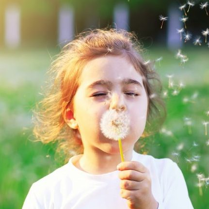 young girl blowing dandelion seeds into the air outside on a sunny day